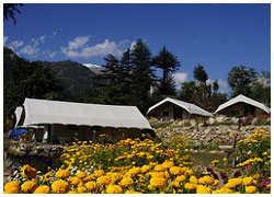 Camping Packages for Sangla Valley