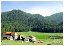 Shimla Manali Dharamshala Dalhousie Chandigarh package from Delhi