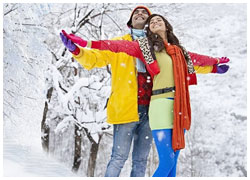 Shimla Tour Package From Chandiagarh-Shimla Travel Guide
