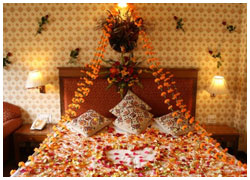 Honeymoon Tour Shimla Manali Chandigarh