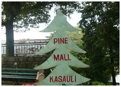 Places to Visit in Kasauli-Things to do in Kasauli-Tourist Attractions in Kasauli