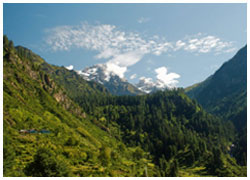 Tosh Trek With Backpacker Stay In Kasol