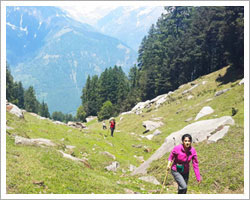 Trek To Triund Camp Dharamshala