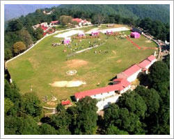 Shimla Local sightseeing package