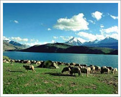 Places to Visit in Chandertal Lake Camping in Spiti Valley-Camping in Chandertal Lake and Dhankar Lake