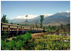 Tourism in Palampur Hill Station, Best Places in Palampur